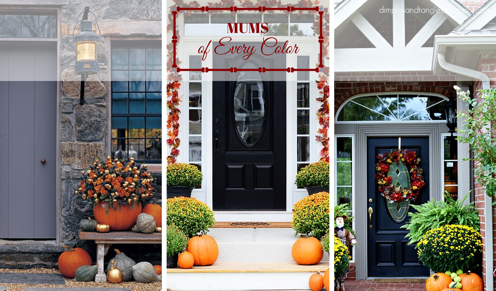 Front Door Ideas for Fall - Mums